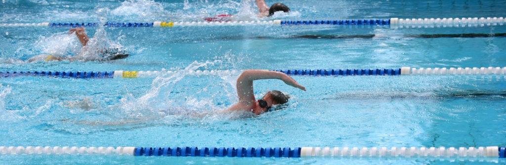 趣味の水泳